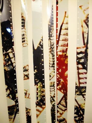 Livi_in_Kyoto2011_footage1.jpg